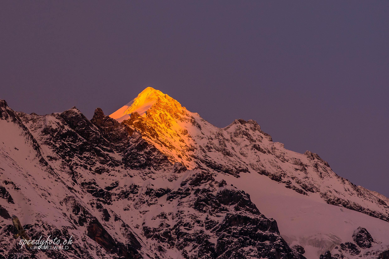 Last Light - Mittelhorn Grindelwald