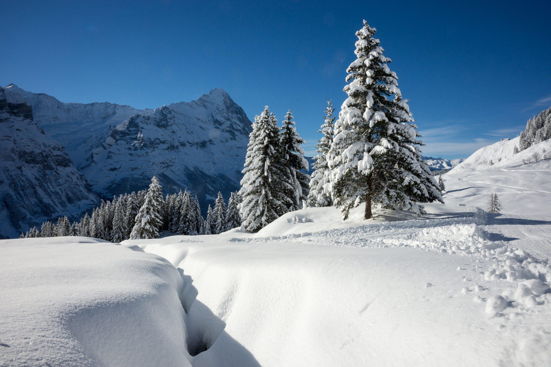 Winterwonderland Grindelwald