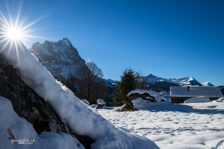 Winterwalk - Grindelwald