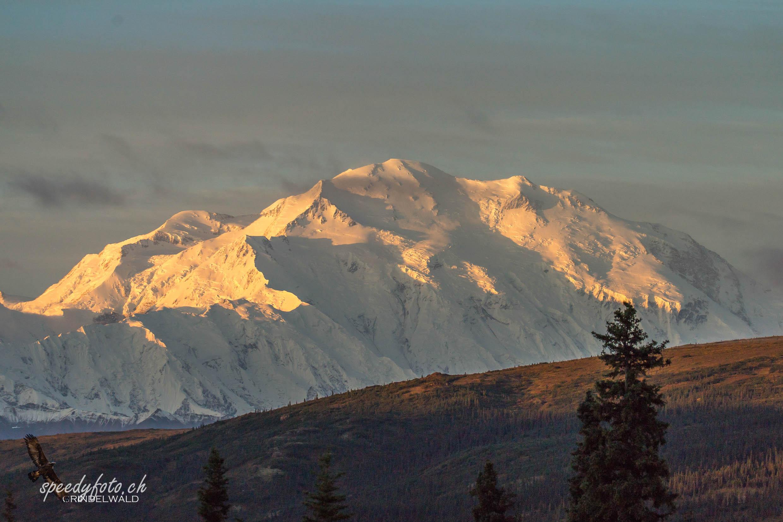 Mt. Denali - McKinley