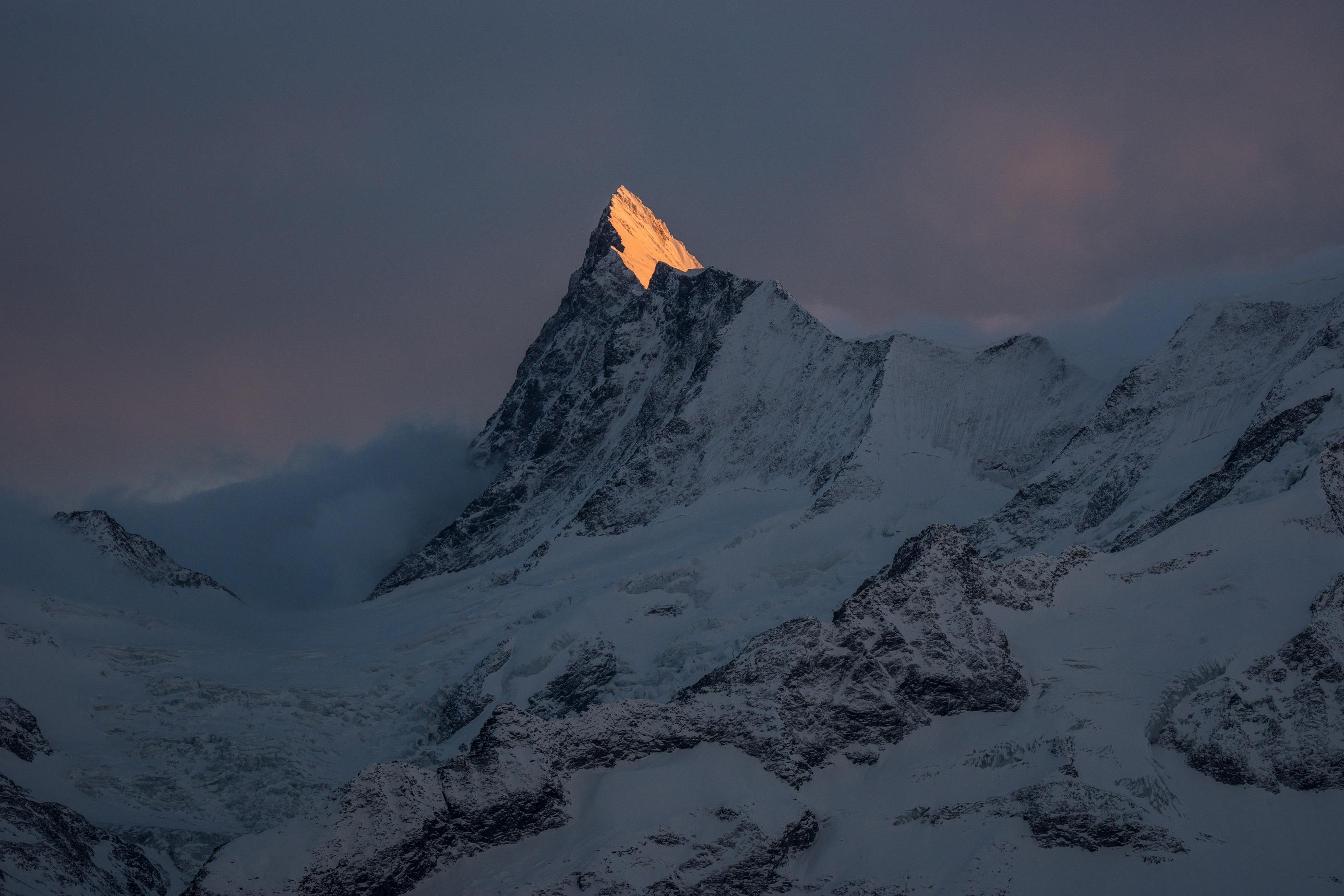Alpenglühen am Finsteraarhorn