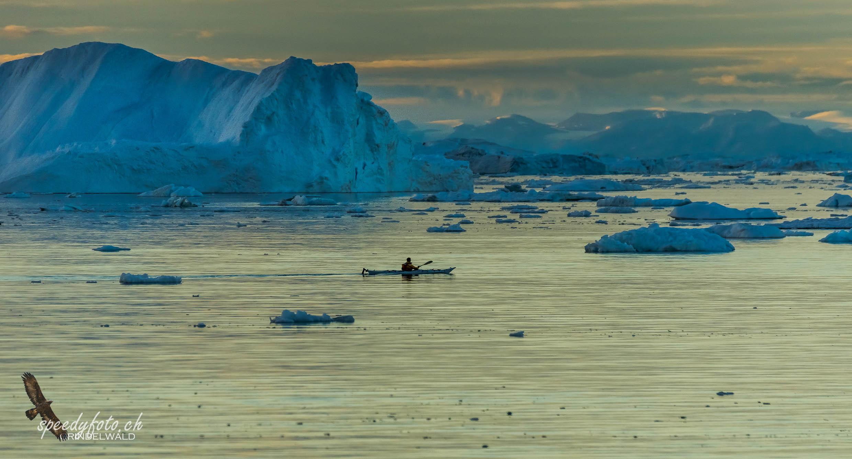 Sunset Kajaker, Ilulissat