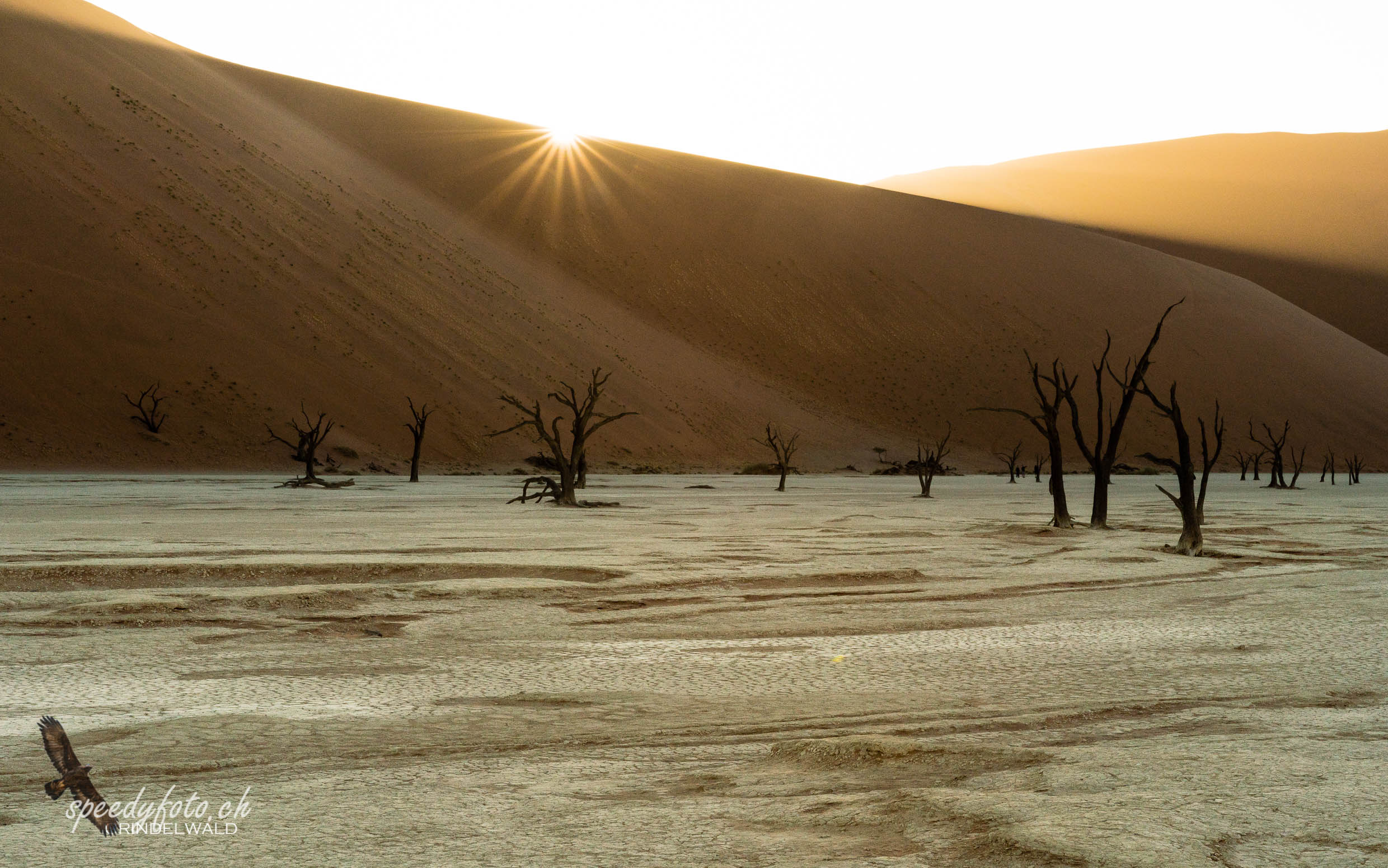 First Sunshine - Sossusvlei
