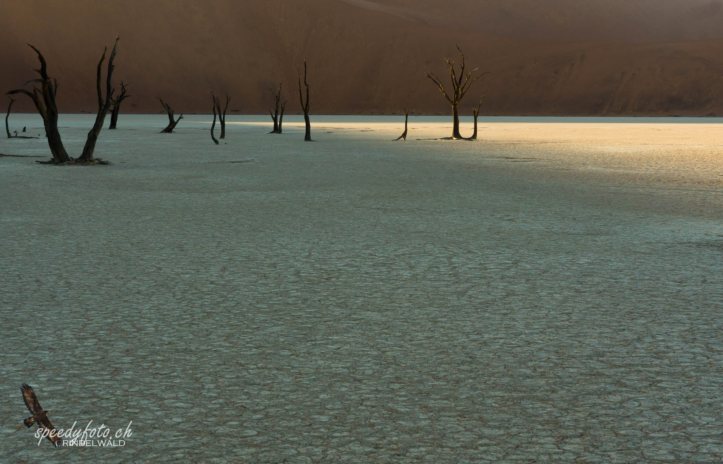 Lonely Place - Sossuvlei