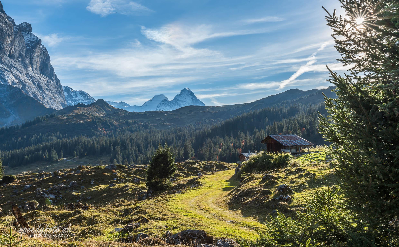 Herbstlandschaft Gr. Scheidegg
