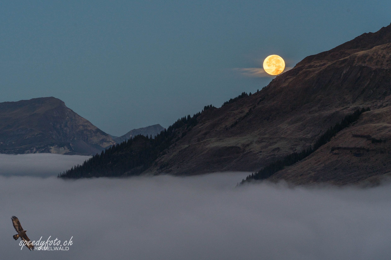 rolling Moon - Monduntergang