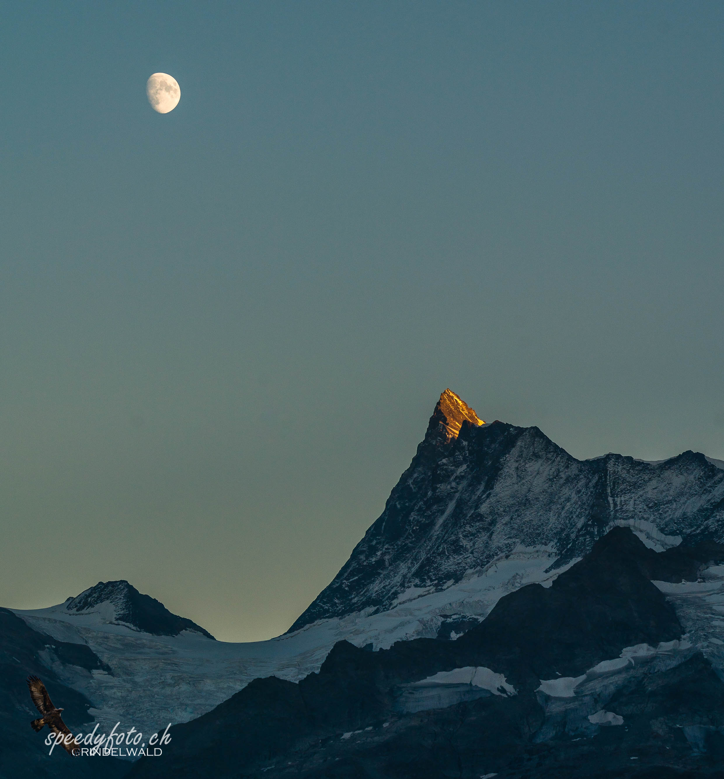 Last light - Finsteraarhorn