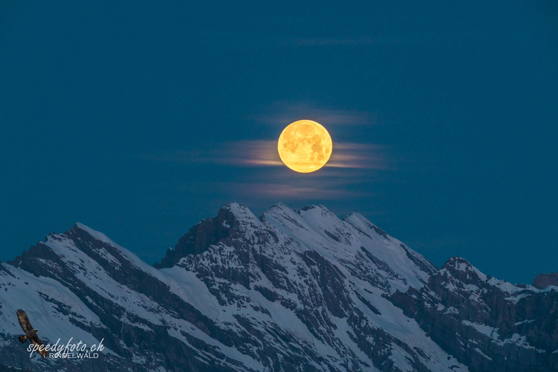 Monduntergang an der Blüemlisalp