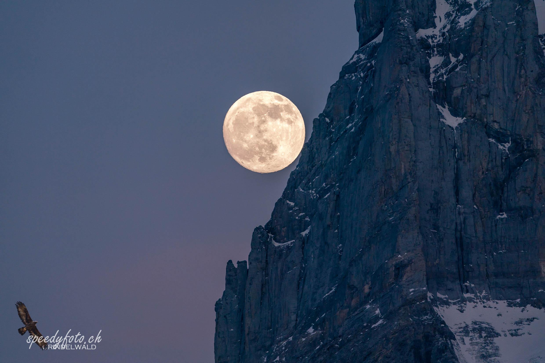 Rising Moon - Wetterhorn