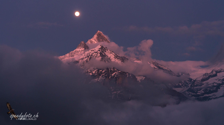 Nacht über dem Berg - Schreckhorn
