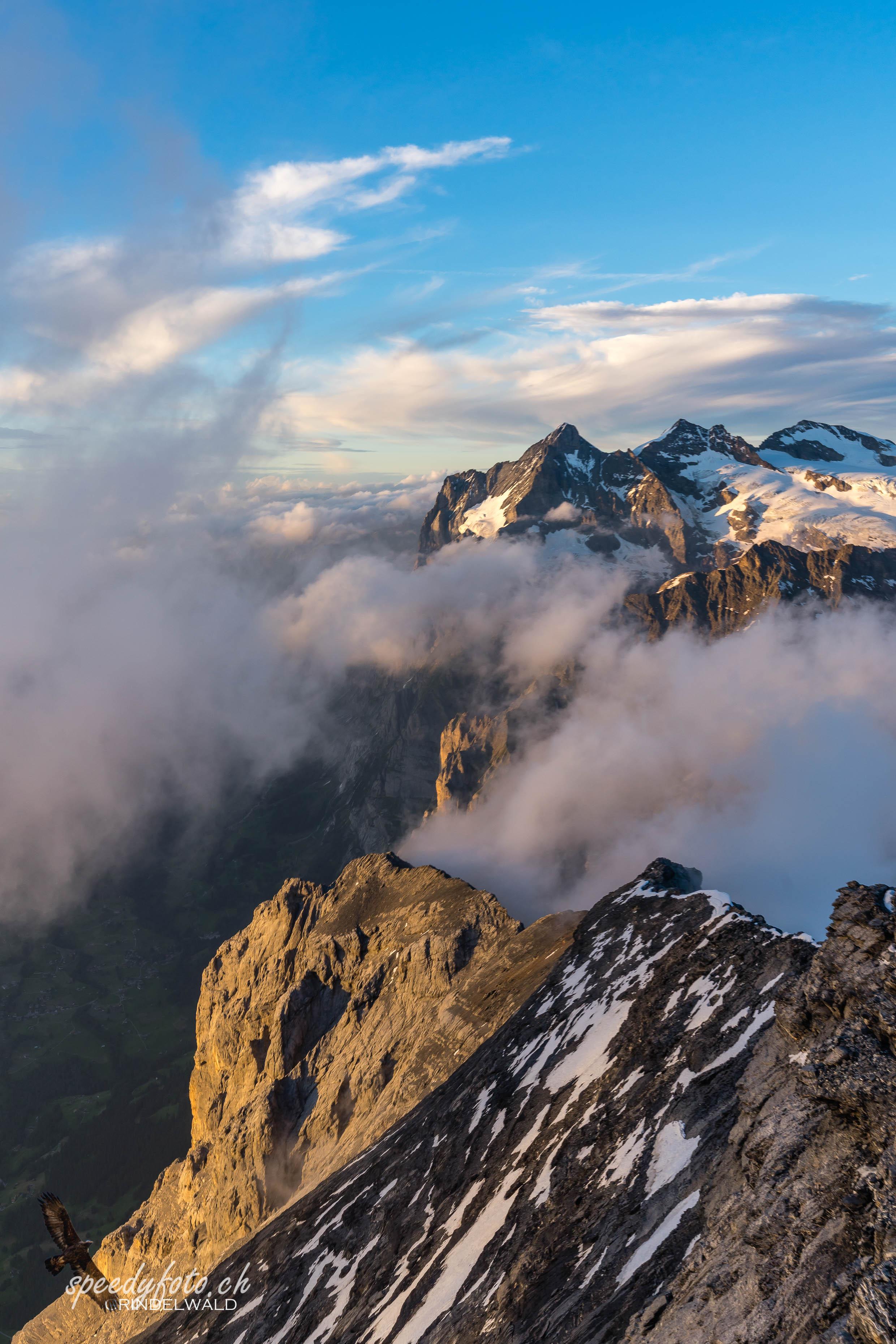 Wetterhorn - Hausberg von Grindelwald