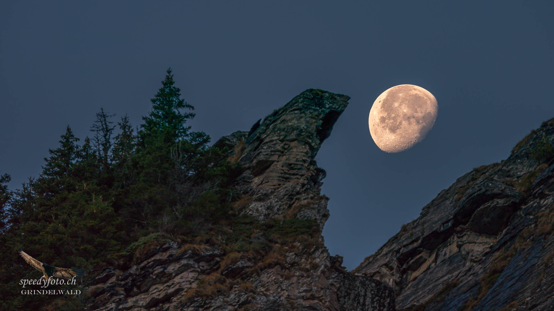 """""""Der Mondfresser"""" - Burg Grindelwald"""