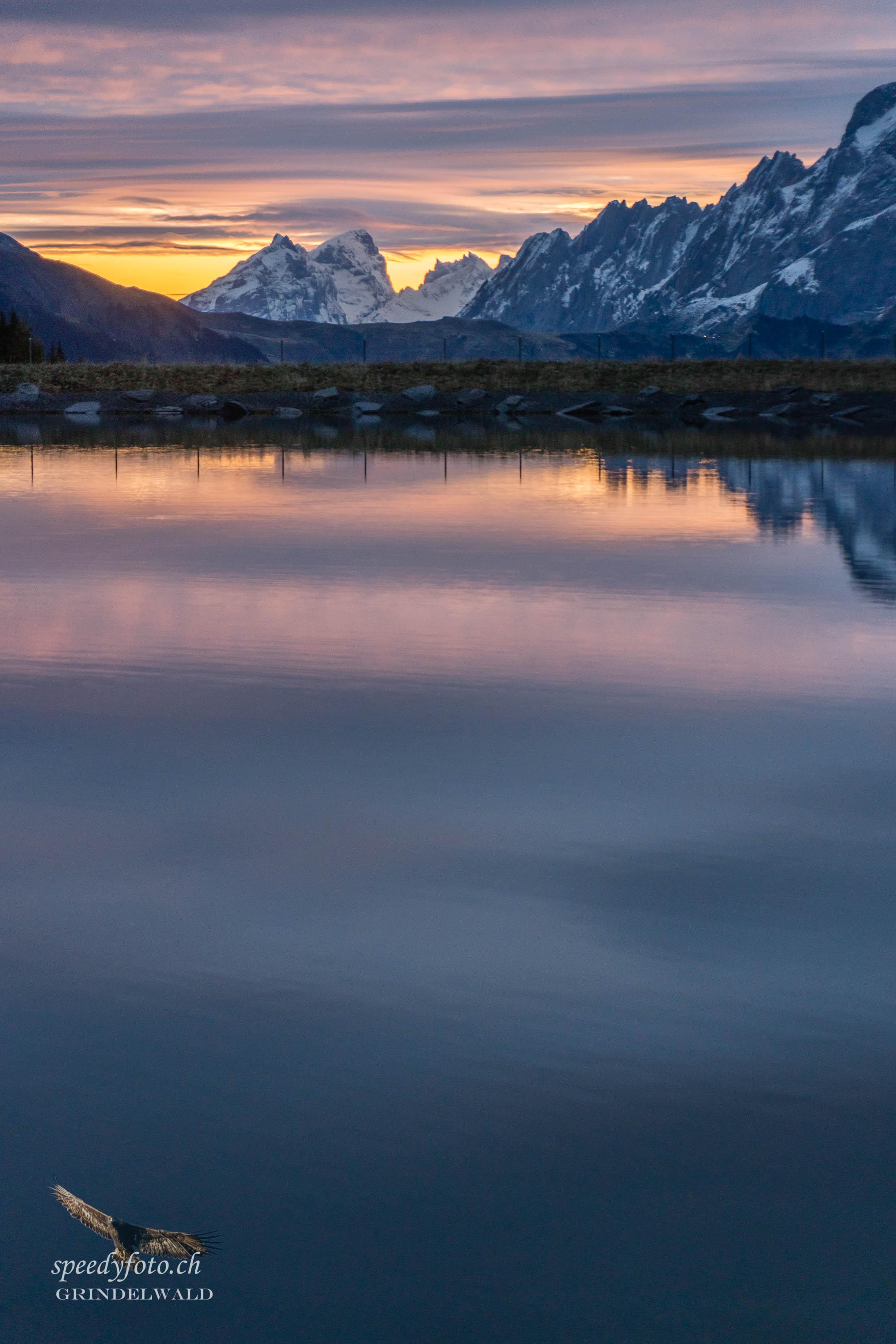 Frühe blaue Stunde - Grindelwald