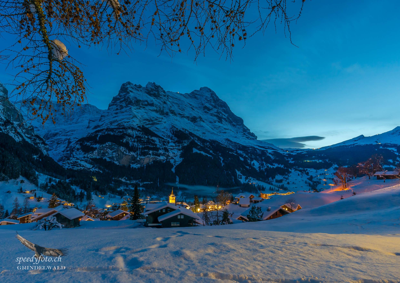 Abendruhe - Grindelwald Nature