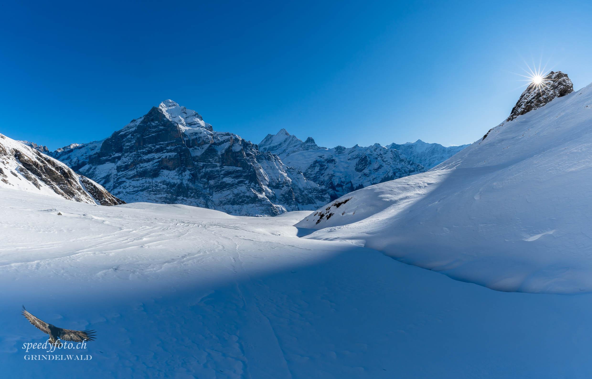 The Skiarea - First