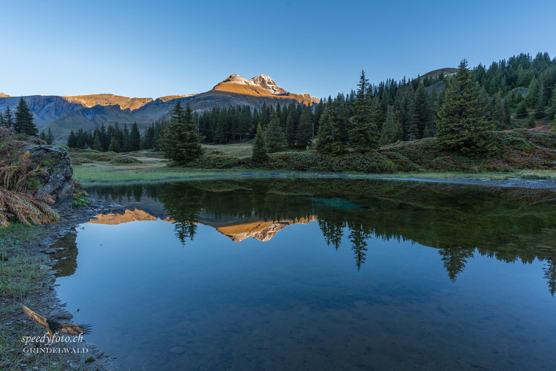 Herbstspiegelung - Grindelwald