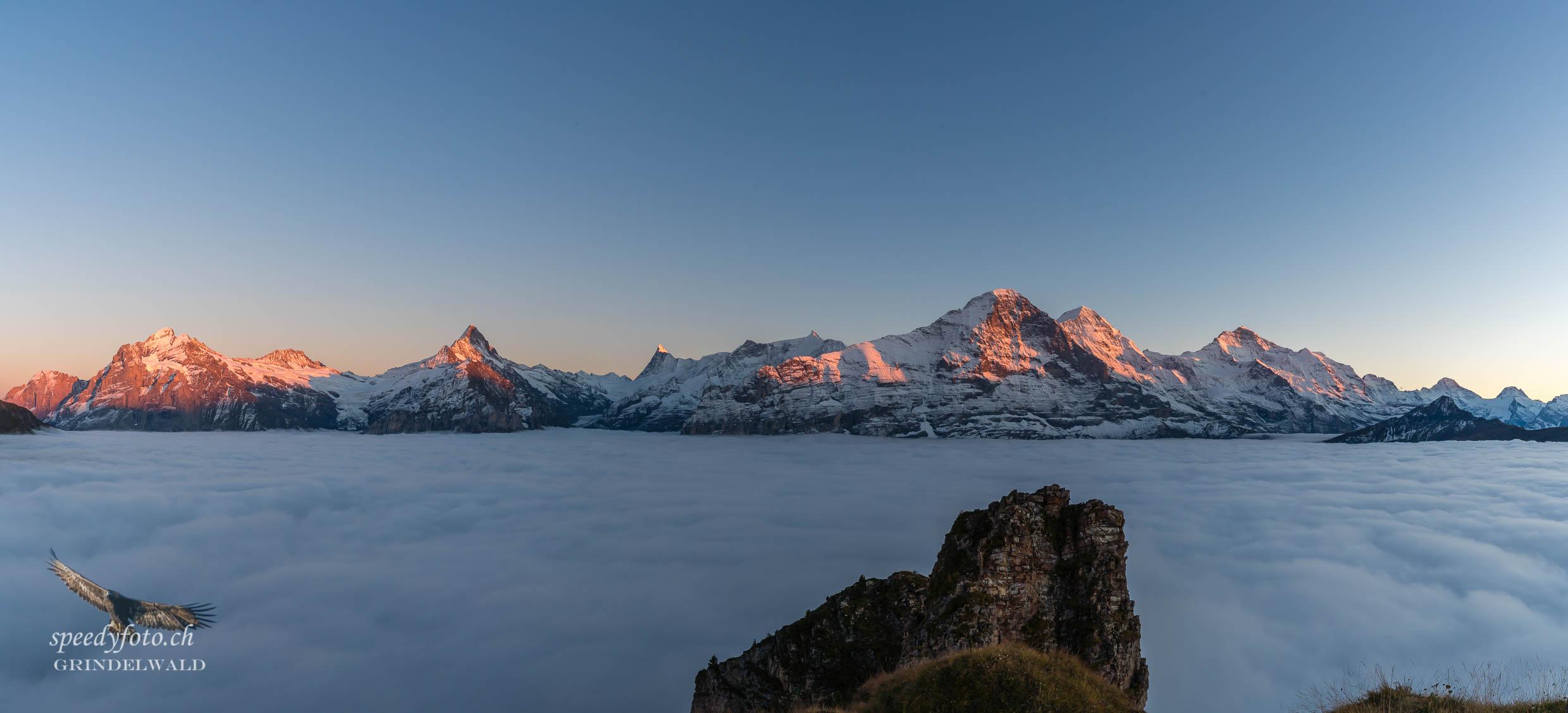 Nebelmeer Panorama - Grindelwald
